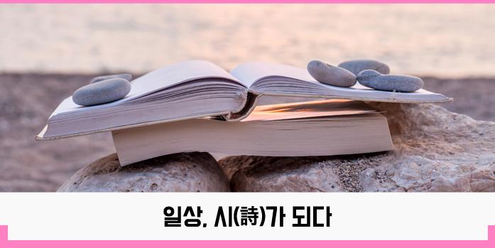 트렌드-시_도비라